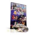 2016 兒童音樂劇『魔幻紙皮屋』-DVD